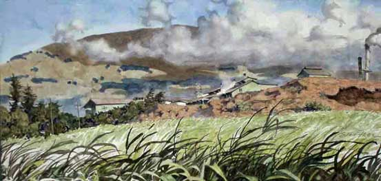 Painting by Eddie Flotte: Mill Across the Sugar Cane